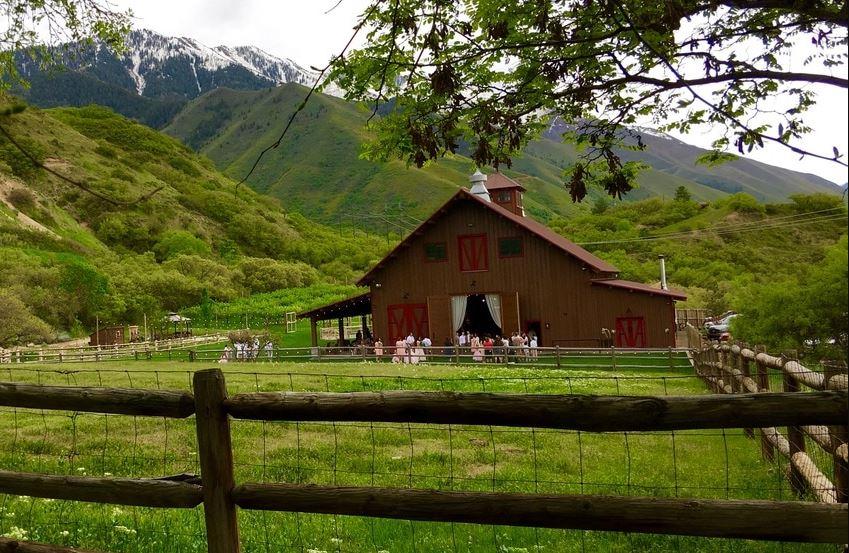 Quiet Meadow Farms